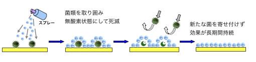 抗菌の仕組み